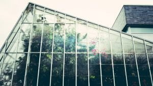 Greenhouse Windows - How to Clean